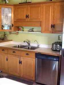 Stainless Steel Refrigerator, Stove and Dishwasher