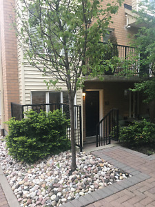 1 Bedroom Condo/ Townhouse in King West