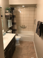 Bathroom Renovations: Update or completely Renovate!