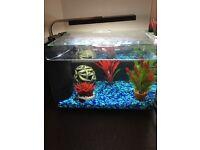 20ltr aquarium/fish tank led lights heater and filter