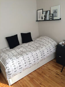 Room Available in a 4 Bedroom apartment/house
