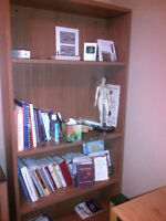 4 Shelf Grand and Toy solid wood bookcase