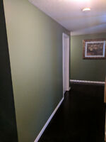 FOR LANDLORDS, HOME BUYERS AND SELLERS. AFFORDABLE PAINTING