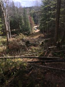 Grand terrain boisé - St-Zenon Lanaudiere