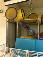 Play Structure Equipment