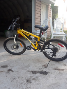 Sold-Kranked Gromm DS Bike 20-in