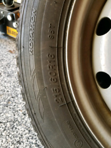 Studded Winter Tires and Rims $400 OBO