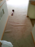 Have flooring issues, carpet stretchs, flooring patches