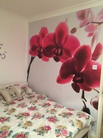 Double room to rent in end terrace