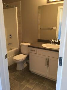 Single family house with additional separate basement entry Edmonton Edmonton Area image 8