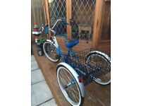 Adult tricycle & Accessories