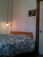 $422 / 4br - Room Sublet January (Outremont)