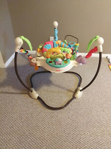 Fisher Price Jumperoo/Saucer