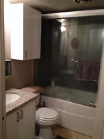 Nice 1 bedroom Suite, adult, clean and quiet, concrete, Mt royal
