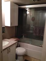 Nice 1 bedroom Suite, adult, clean and quiet, concrete, Mt royal