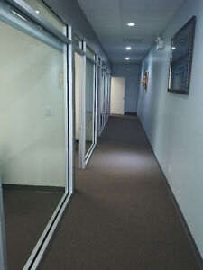 Modern Fully Furnished Professional Offices -