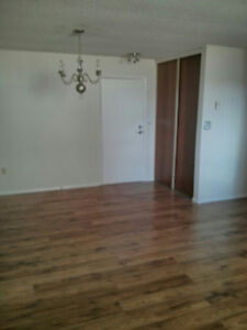 $875+Hydro/Clean 1 BDRM Basement Apt Located Pembridge