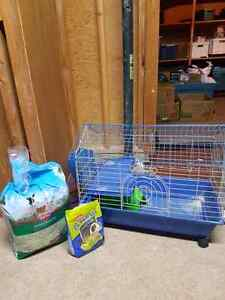 Guinea pig cage and food