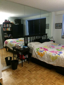 Beautiful 2 Bedroom apartment 5 minutes walk to McGill for Rent