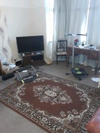 Flat mate needed honest and reliable character