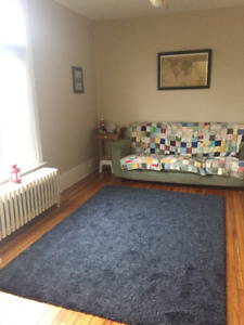 Large One Bedroom Plus Den Close to Downtown