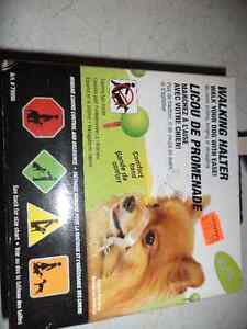 Different things for dogs Cornwall Ontario image 2