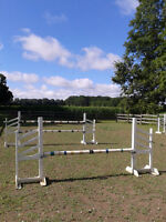 8 horse jumping standards, which makes 4 jumps