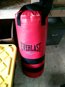EVERLAST HEAVY PUNCHING BAG APPROX 50+ LBS $60 TAKES
