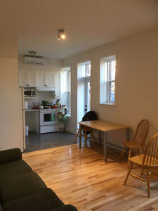 1 Room For Rent in 5 1/2 Plateau/Mont Royal June-Aug