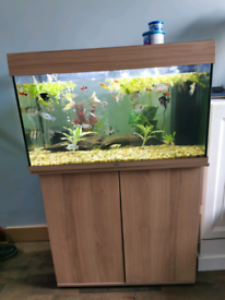 Fish Tank and Unit. Complete with Fish, Filter and Accessories