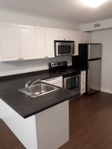 Large Modern Open Concept One Bedroom Apt Steps from Queen's ARC