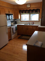 any kind of kitchen cabinets installation service.  including I