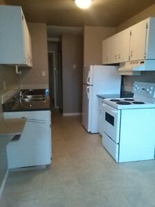 One bedroom apartment for rent at 12015-103 Avenue Oliver Area