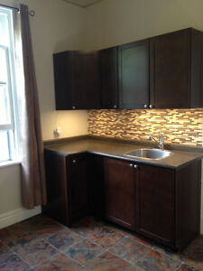 Large 2 bed. Downtown includes free internet
