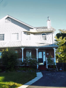 Experienced Pet-Free Homestay in Clayton Park