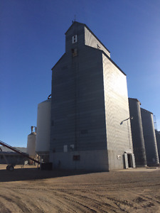 Grain Elevator and wooden Bin