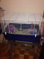 Small Animal Cage & Water Bottle