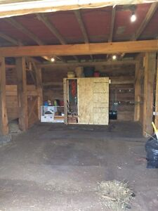 Seeking Horse Boarders for Private CoOp