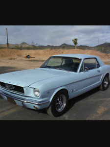 Looking for a old project car or truck