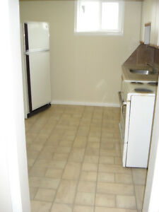 Perfect furnished 1 bdrm suite on southside for right person