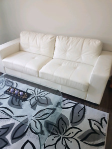 Condo sofa area rug and tempered glass table