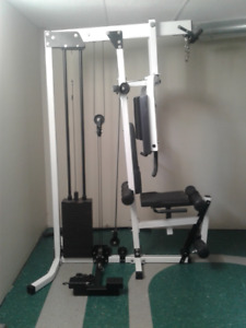 northern lights home gym cable system