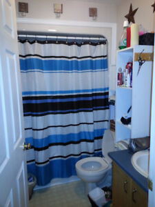 2 Bedroom Apartment for Rent in Grand Falls Windsor, NL