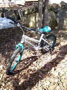 Vélo 18 pouces pour fille