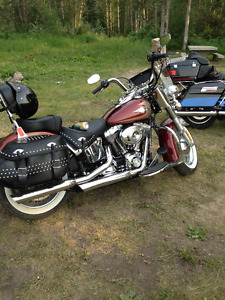 2009 softail classic