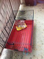 Cage pour rongeur 40$