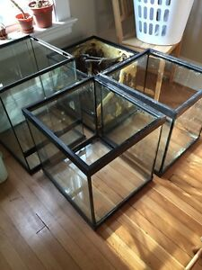 Two 31 gallon aquariums