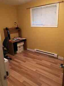 2 Bedroom Basement Apartment between Avalon Mall and MUN St. John's Newfoundland image 7