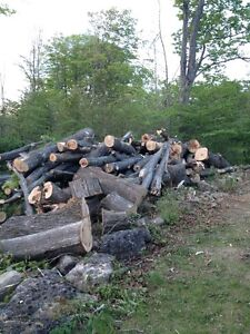 Logs for sale... Best Offer gets them