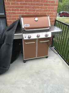 Barbecue 1 year like new !